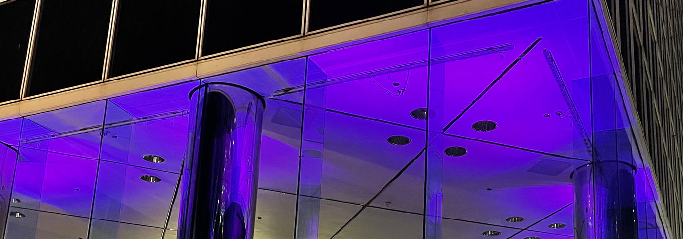 Hill Centre Towers Shine Purple for Epilepsy Awareness